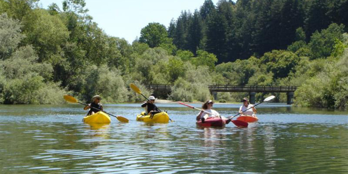 Kayaking the Russian River